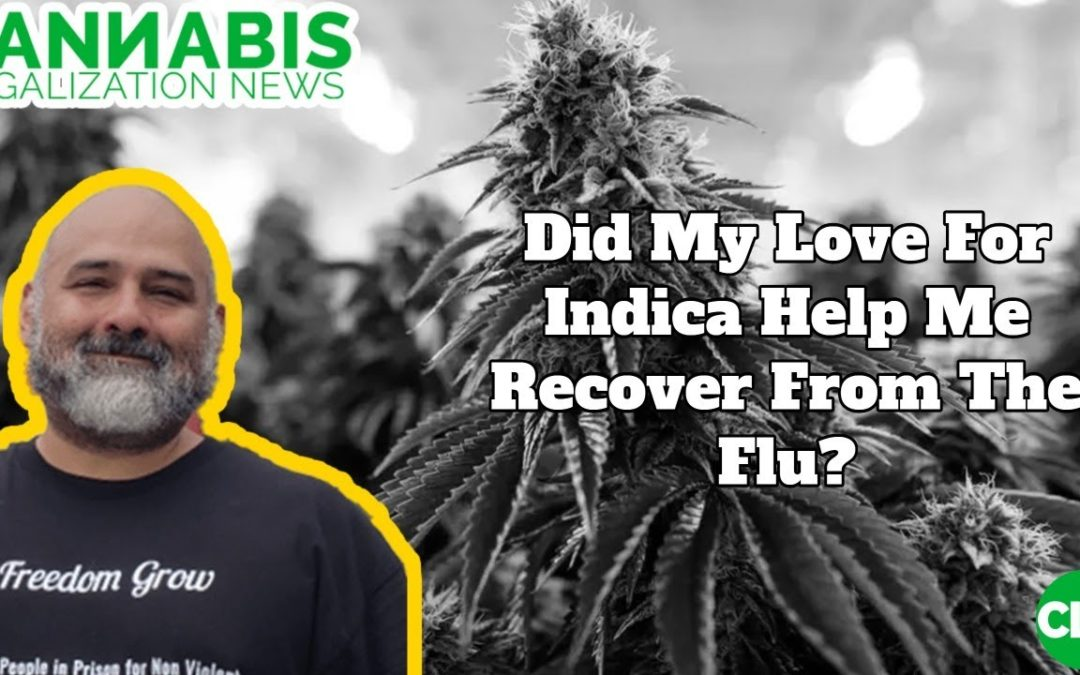 Did My Love For Indica Help Me Recover From The Flu?