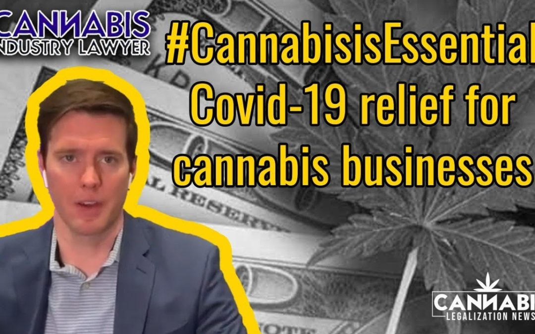 Emergency Cannabis Small Business Health and Safety Act Covid-19 relief bill for Cannabis Businesses