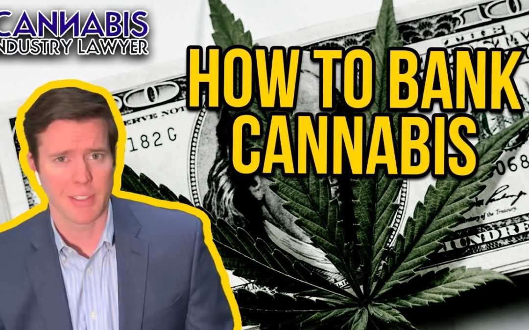 Cannabis Banking Consultant – How to get a bank account for your cannabis business – FinCEN SARs