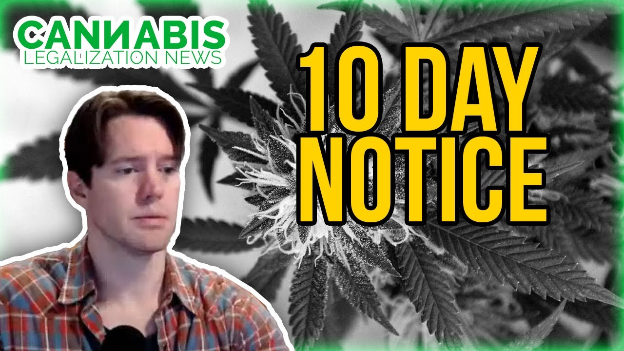 10-Day Notices of Deficiency for Cannabis Applications