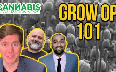 How to Start a Legal Grow Op -Washington Tier 3 Cannabis Grow