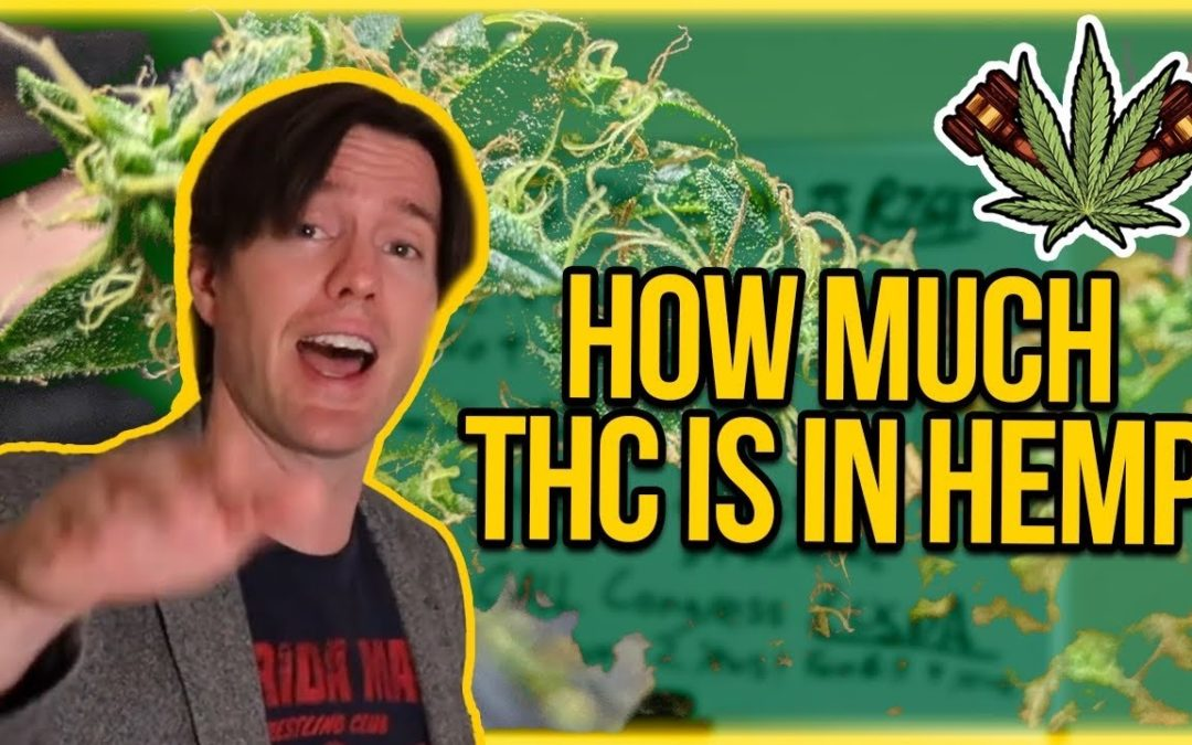 How much THC is in Hemp? THC Levels in Hemp Explained – Why 1% is better than 0.3% THC Hemp