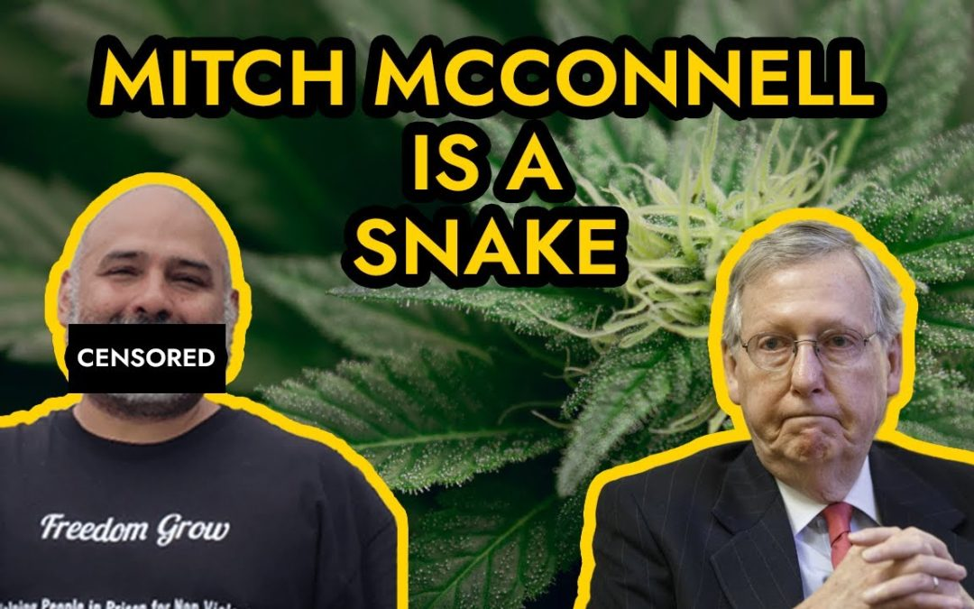 Mitch McConnell is a snake disguised as a turtle