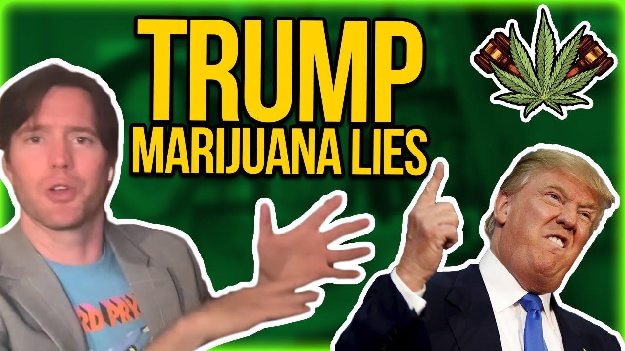 Trump Marijuana Lies & Coronavirus Politics - Dr. Fauci as the new Dr. Woodward