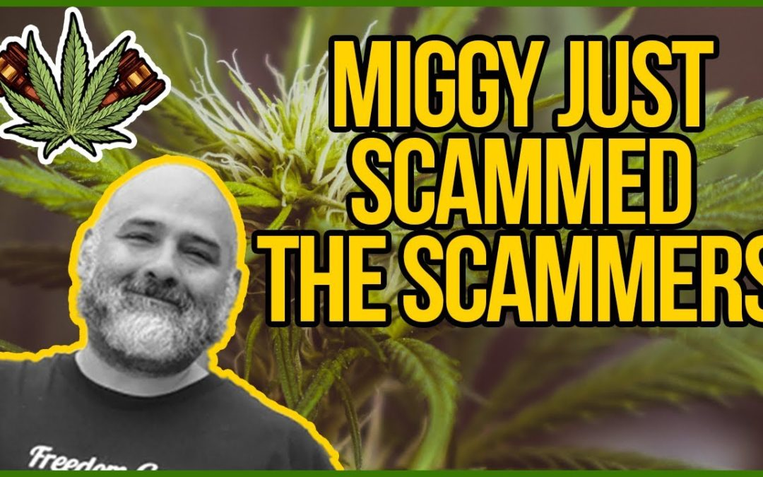 How to Troll Dispensary Scammers