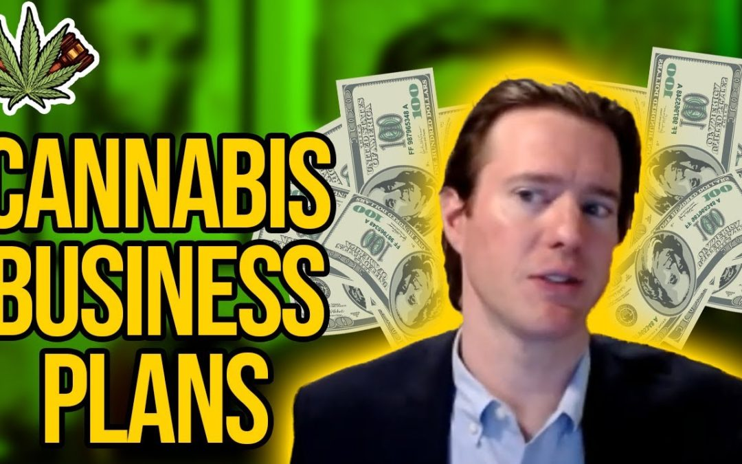 Cannabis Business Plans | How to Make a Marijuana Business Plan