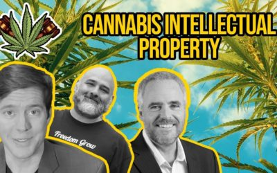 Cannabis Intellectual Property – Can You Trademark Cannabis?